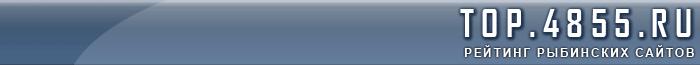 Сайты Рыбинска: рейтинг рыбинских сайтов